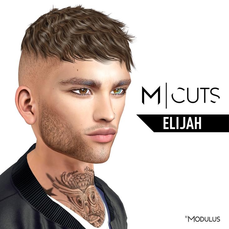modulus hairs elijah 1024